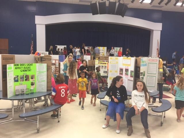 science fair 4